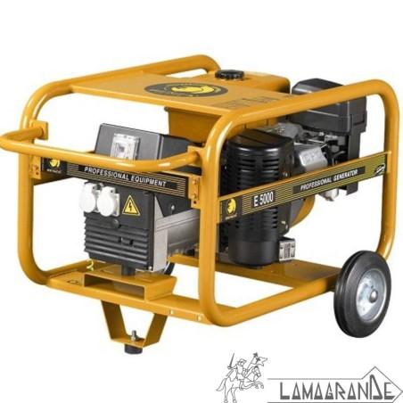 Generador E5000 Robin Benza